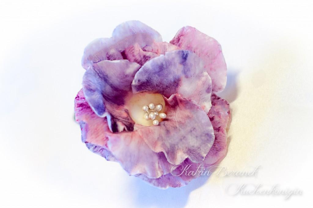 Rose Fondant Blüten Tutorial Torte Kuchenkönigin Blue for you